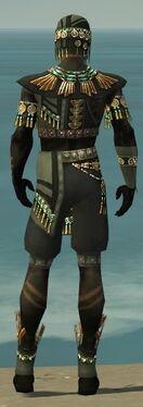 Ritualist Elite Luxon Armor M gray back