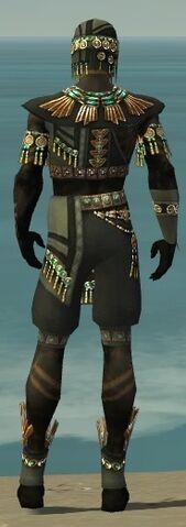 File:Ritualist Elite Luxon Armor M gray back.jpg