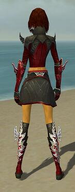 Assassin Deldrimor Armor F dyed back