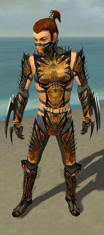 File:Assassin Elite Exotic Armor M gray front.jpg