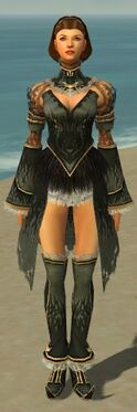 Mesmer Primeval Armor F gray chest feet front