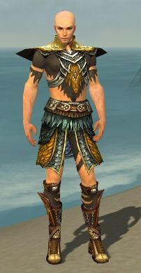 File:Ritualist Deldrimor Armor M dyed front.jpg