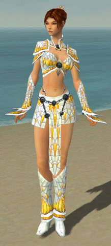 File:Elementalist Elite Iceforged Armor F dyed front.jpg