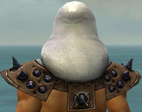 File:Dervish Obsidian Armor M dyed head back.jpg