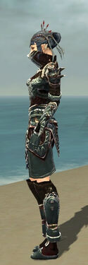 Necromancer Asuran Armor F gray side