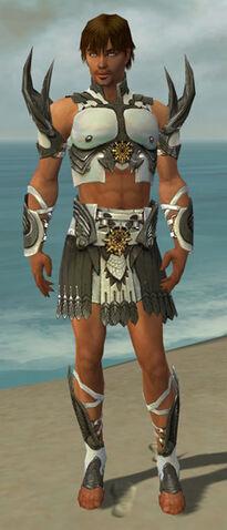 File:Paragon Elite Sunspear Armor M gray front.jpg