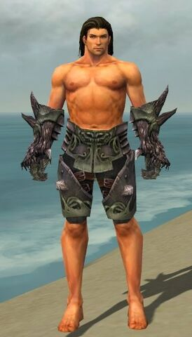 File:Warrior Primeval Armor M gray arms legs front.jpg
