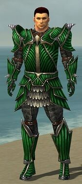 Warrior Wyvern Armor M nohelmet