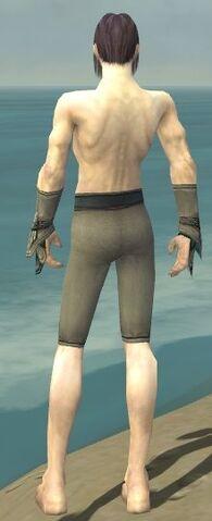 File:Elementalist Asuran Armor M gray arms legs back.jpg