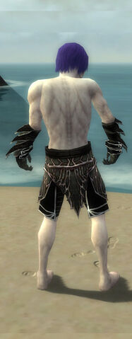 File:Necromancer Elite Luxon Armor M gray arms legs back.jpg