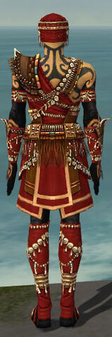 File:Ritualist Imperial Armor M dyed back.jpg