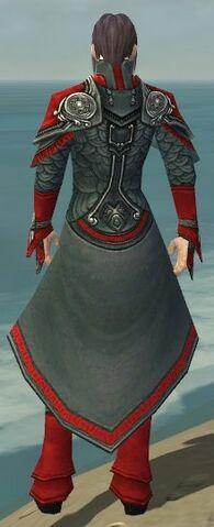 File:Elementalist Asuran Armor M dyed back.jpg
