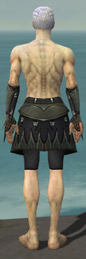 Necromancer Cabal Armor M gray arms legs back