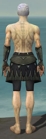 File:Necromancer Cabal Armor M gray arms legs back.jpg