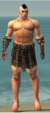 Warrior Elite Gladiator Armor M gray arms legs front