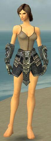 File:Warrior Elite Templar Armor F gray arms legs front.jpg