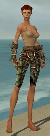 File:Ranger Elite Drakescale Armor F gray arms legs front.jpg