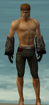 File:Ranger Norn Armor M gray arms legs front.jpg