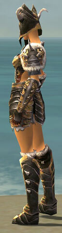 File:Warrior Norn Armor F dyed side.jpg
