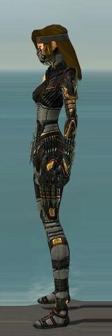File:Assassin Elite Kurzick Armor F gray left.jpg