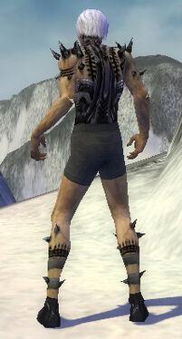 Necromancer Obsidian Armor M gray arms legs back