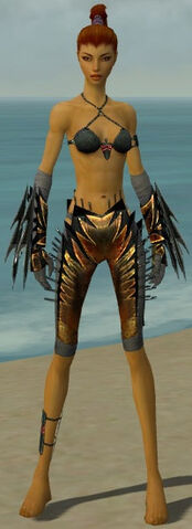 File:Assassin Elite Exotic Armor F gray arms legs front.jpg