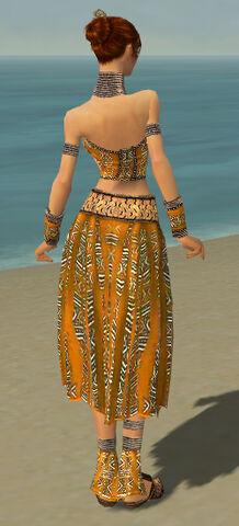 File:Elementalist Istani Armor F dyed back.jpg