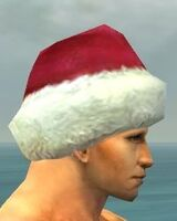 Yule Cap gray side alternate