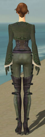 File:Mesmer Rogue Armor F gray back.jpg
