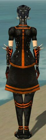 File:Necromancer Shing Jea Armor F dyed back.jpg