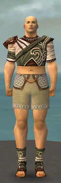 Monk Canthan Armor M gray chest feet front