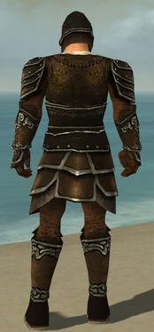 Warrior Shing Jea Armor M gray back
