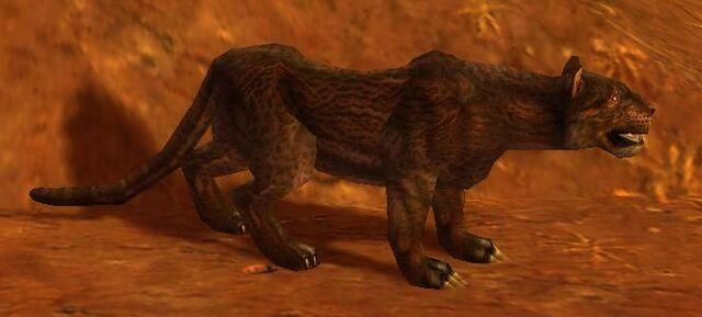 File:Kamiawolf Hearty Puma.JPG