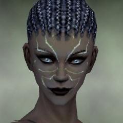 File:Necromancer Primeval Armor F dyed head front.jpg