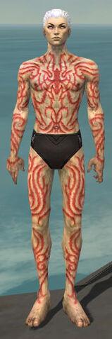 File:Necromancer Scar Pattern Armor M dyed front.jpg