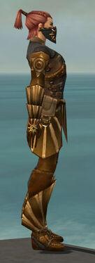 Ranger Sunspear Armor M gray side