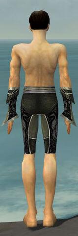 File:Elementalist Shing Jea Armor M gray arms legs back.jpg
