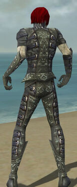 Necromancer Ascalon Armor M gray back