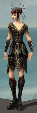 Necromancer Istani Armor F gray front