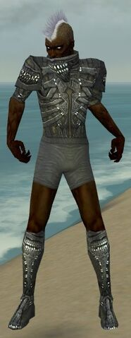 File:Necromancer Necrotic Armor M gray chest feet front.jpg