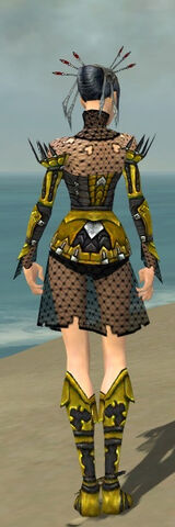 File:Necromancer Cabal Armor F dyed back.jpg