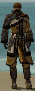 Ranger Norn Armor M dyed front