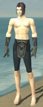 Elementalist Tyrian Armor M gray arms legs front