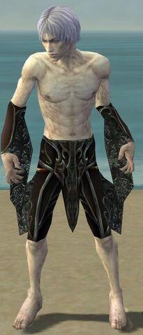 File:Necromancer Vabbian Armor M gray arms legs front.jpg