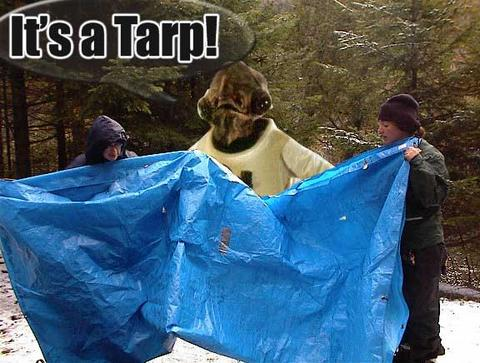 File:Lord Belar Its-a-tarp.jpg