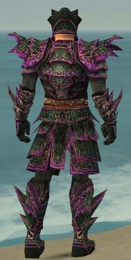 Warrior Elite Luxon Armor M dyed back