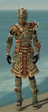 Ritualist Elite Imperial Armor M gray front