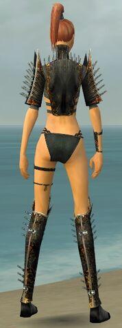 File:Assassin Exotic Armor F gray chest feet back.jpg