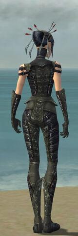 File:Necromancer Ascalon Armor F gray back.jpg