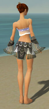 Elementalist Luxon Armor F gray arms legs back